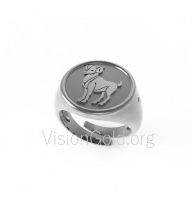 Silver Ring Zodiac Sign Aries,rings, rings for women, latest